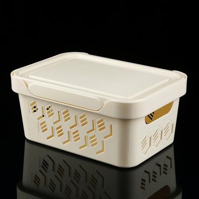 Пластиковый контейнер для хранения DELUXE