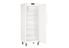 GKv 6410-23 001 шкаф холодильный